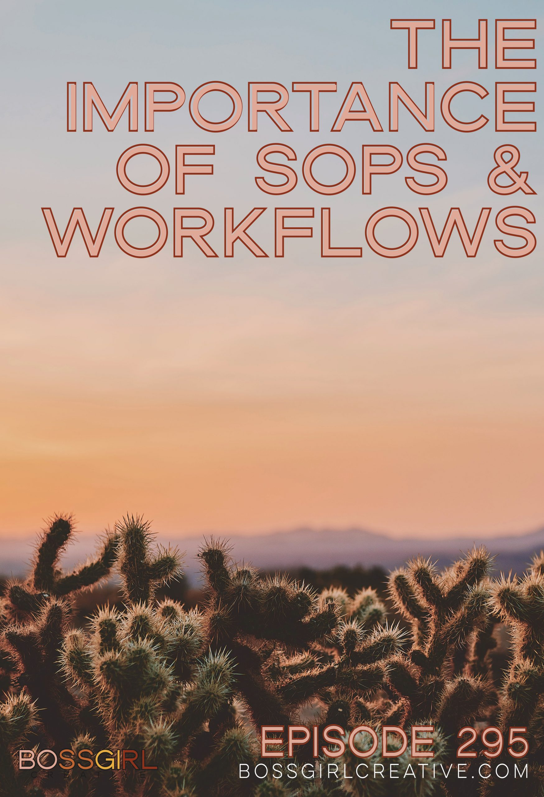 BGC Episode 295 - The Importance of SOPs and Workflows