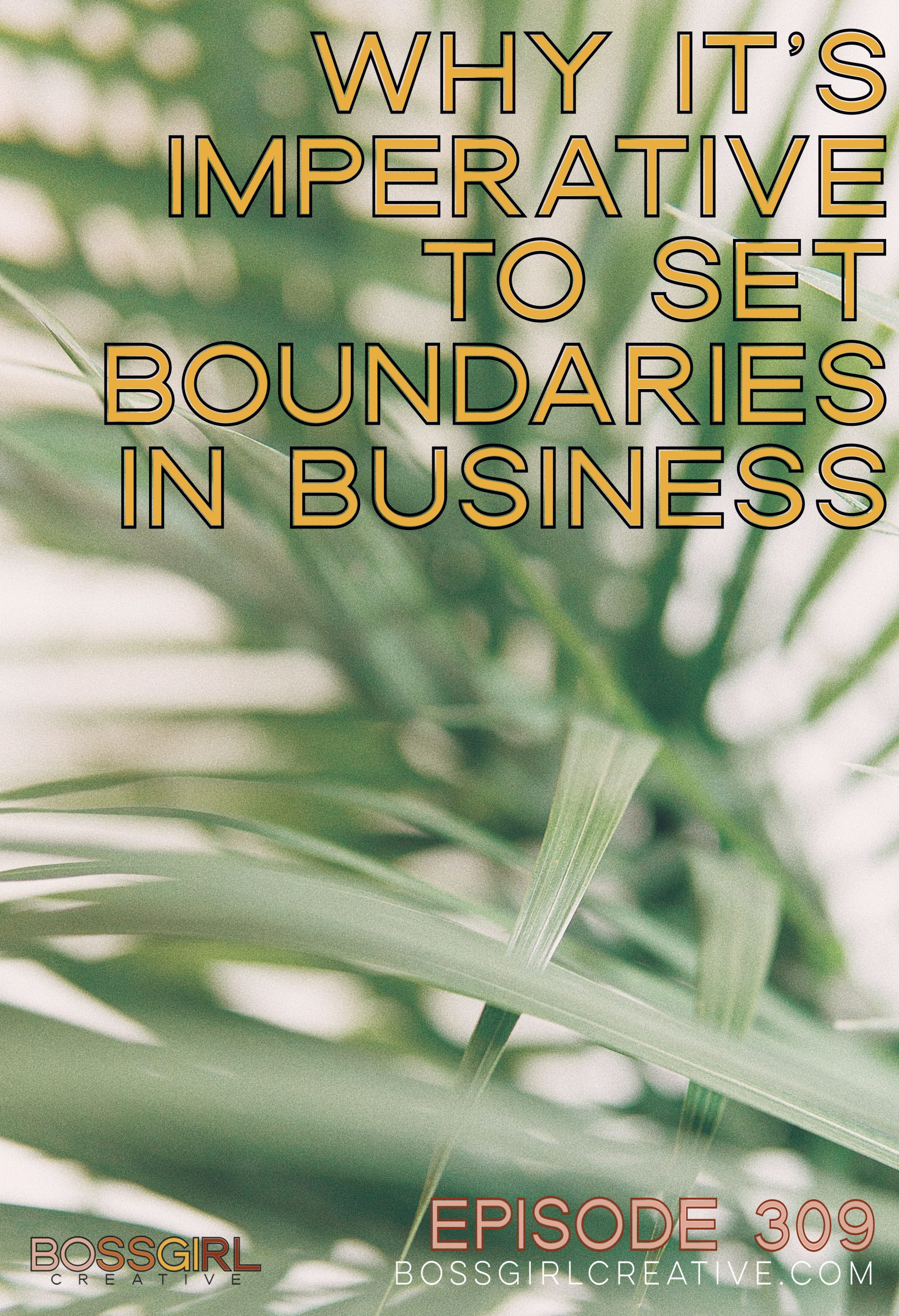 BGC Episode 309 - Why It's Imperative to Set Boundaries in Business