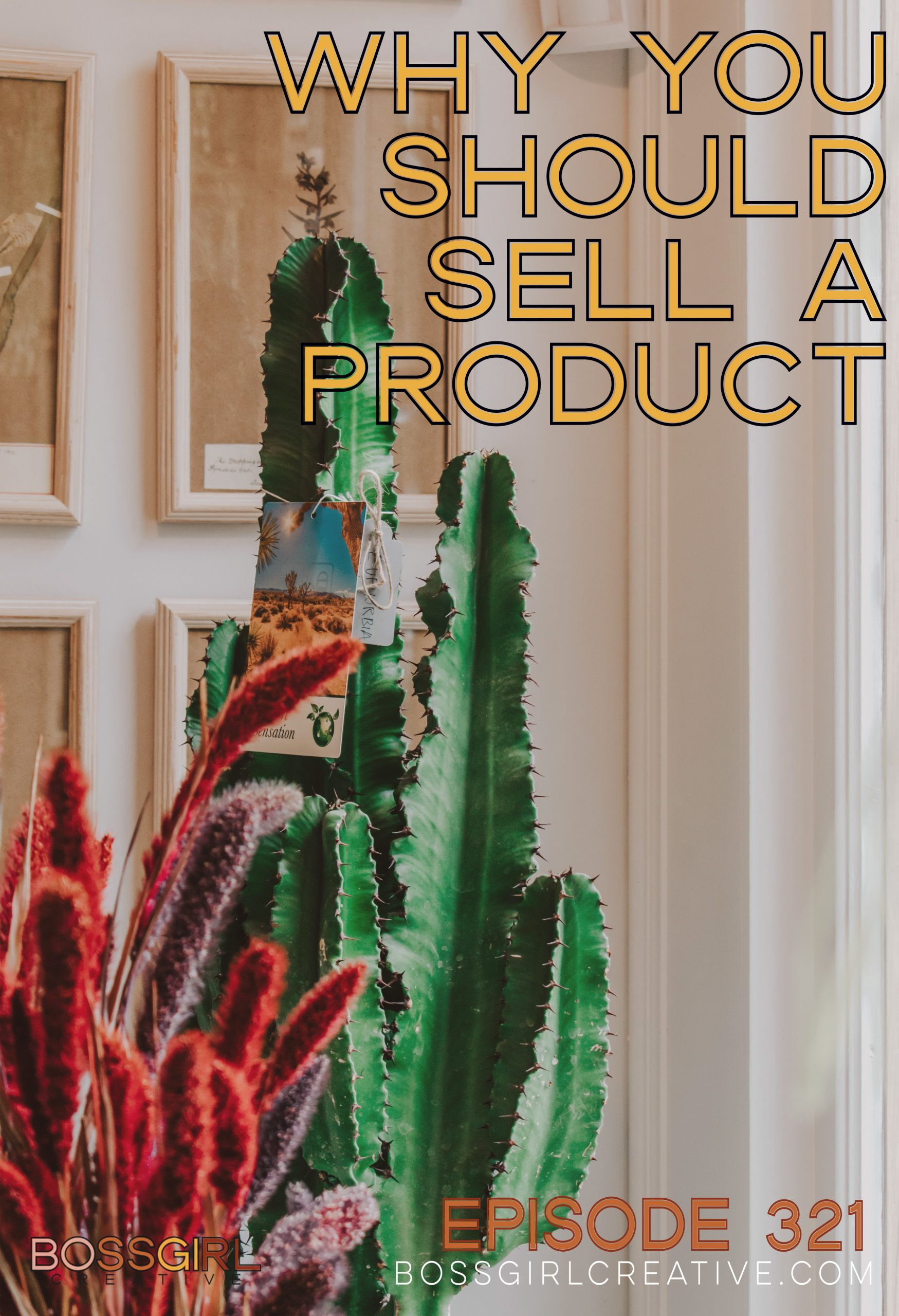 BGC Episode 321 - Why You Should Sell a Product
