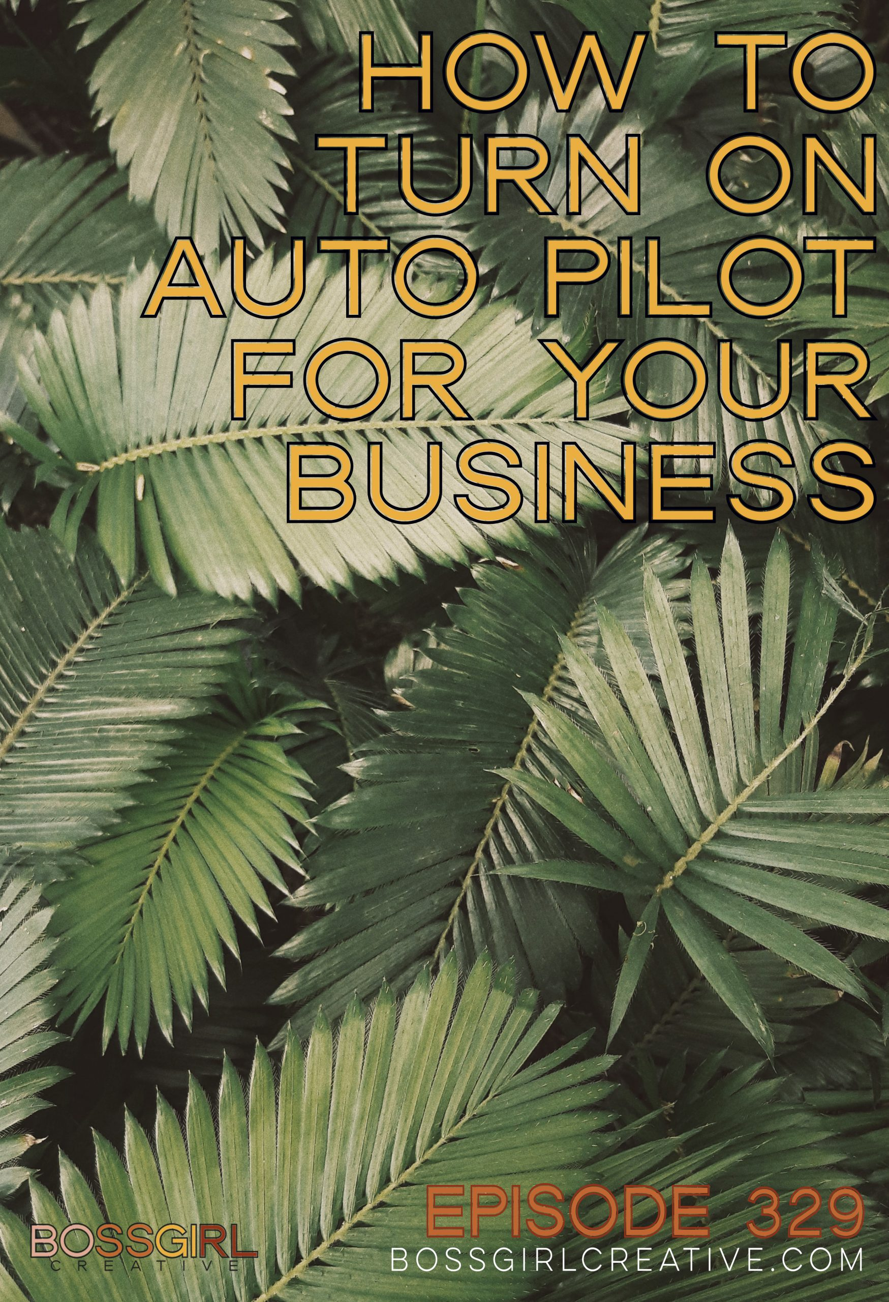 BGC Episode 329 - How to Turn on Auto Pilot for Your Business